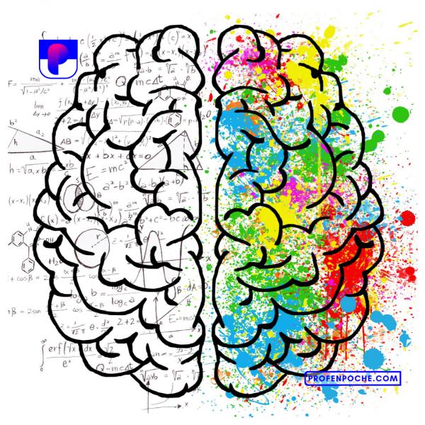 Comment_apprendre_selon_ma_mémoire_by_Pep